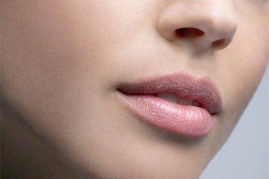 Partes de la piel y su importancia para tratamientos rejuvenecedores